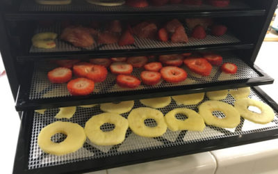 The Ultimate Hands-On Review – Excalibur Food Dehydrator