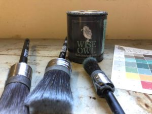 Wise Owl Paint, Color Bowie and Cling-On Brushes