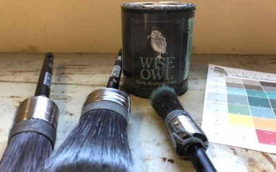 The Wisest Paint and Best Paint Brushes